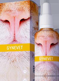 A: GYNEVET (-10%)
